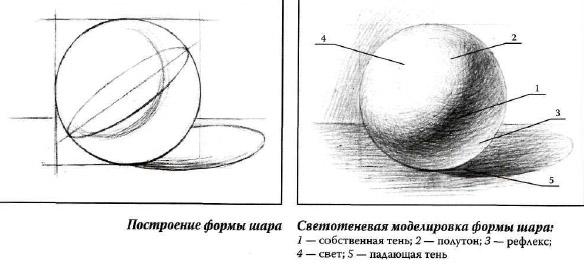 Стадии рисунка шара те же,